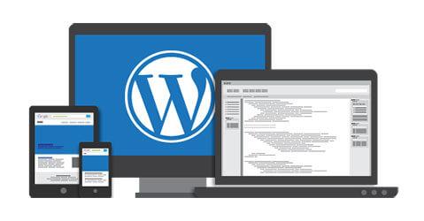 ایجاد سایت با استفاده از وردپرس